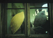 Kaben - Ecologica95 - Fortezza da Basso - Florence